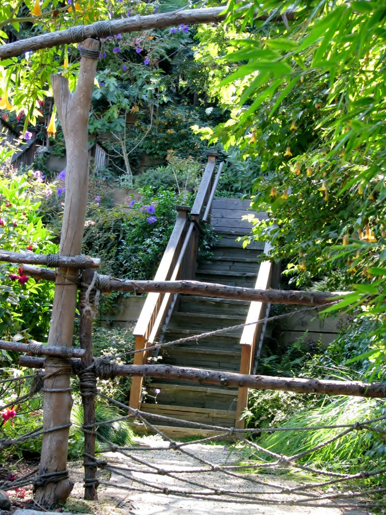 2013 09 10 SF Filbert Stairs (6)