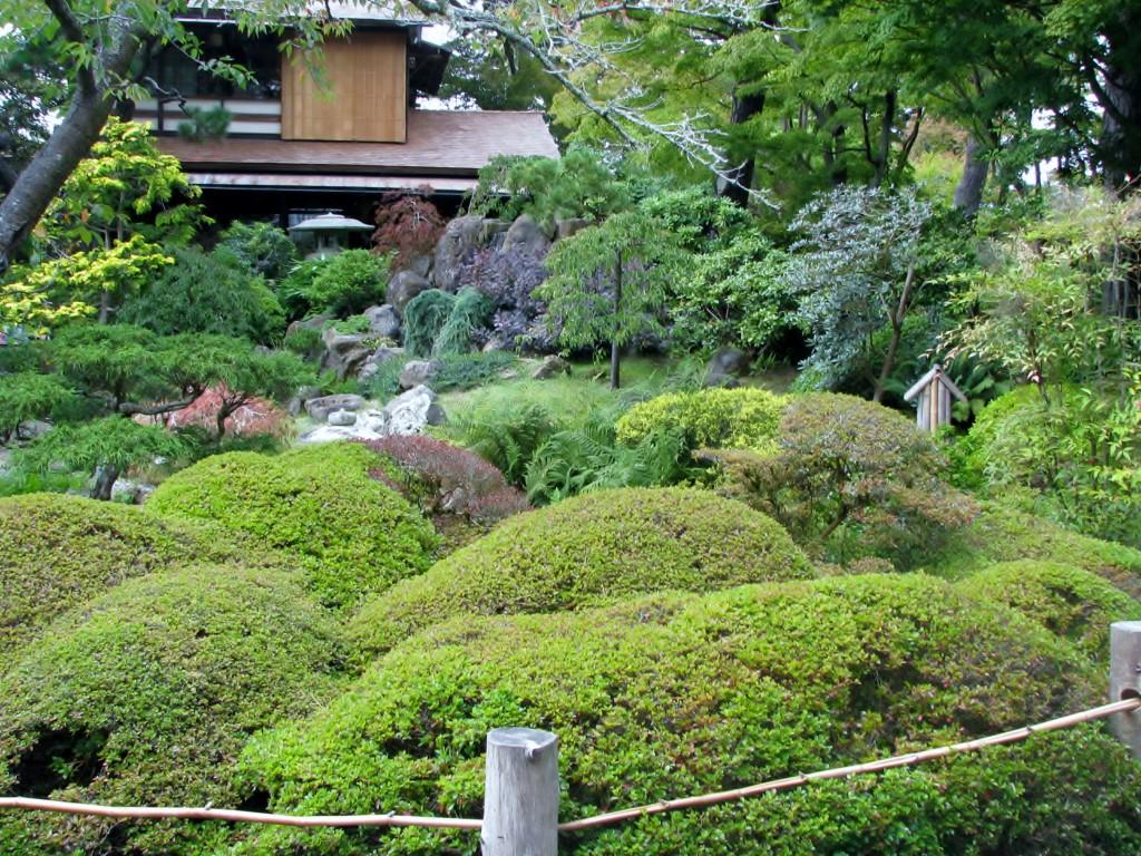 2013 09 12 SF Garden Gate Park Japanese Tea Garden (3)