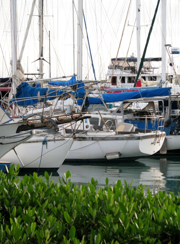 2013 10 29 Hawaii LaMariana Restaurant & Bar Sail Boats