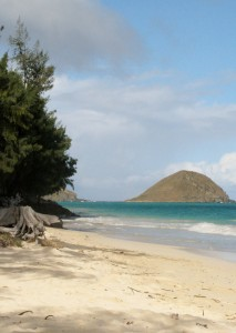 2013 11 01 Hawaii Bellows Air Force Station Beach Ocean 17