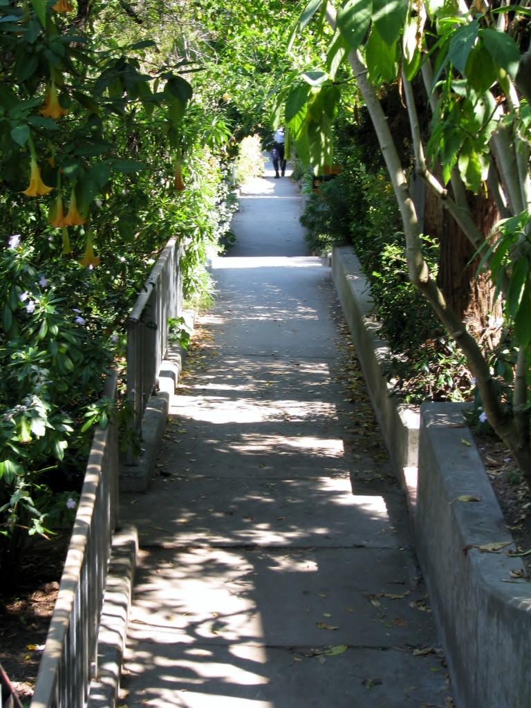 2013 09 10 SF Filbert Stairs (10)