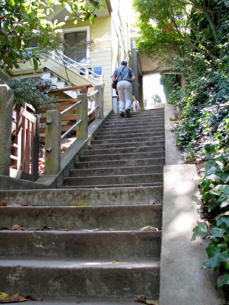 2013 09 10 SF Filbert Stairs (14)