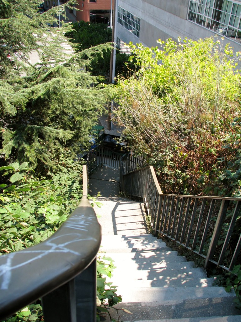 Filbert Steps is one of the most famous stairways in San Francisco in North Beach on eastern part of Telegraph Hill. 400 brick, cement, and wooden steps are surrounded by beautiful gardens along the way, quaintcottage.