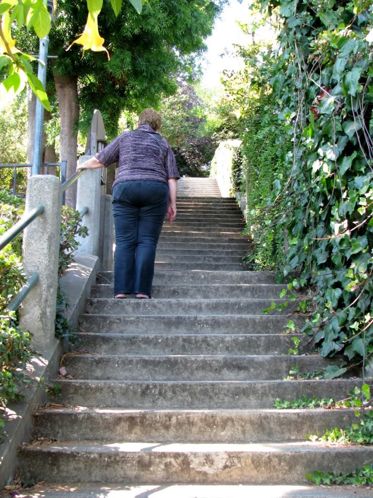 2013 09 10 SF Filbert Stairs (24)