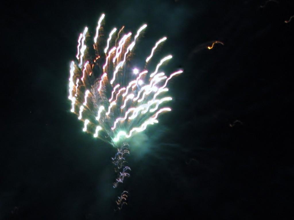 2013 09 14 Haisting Veltum Wedding Reception Fireworks (2)