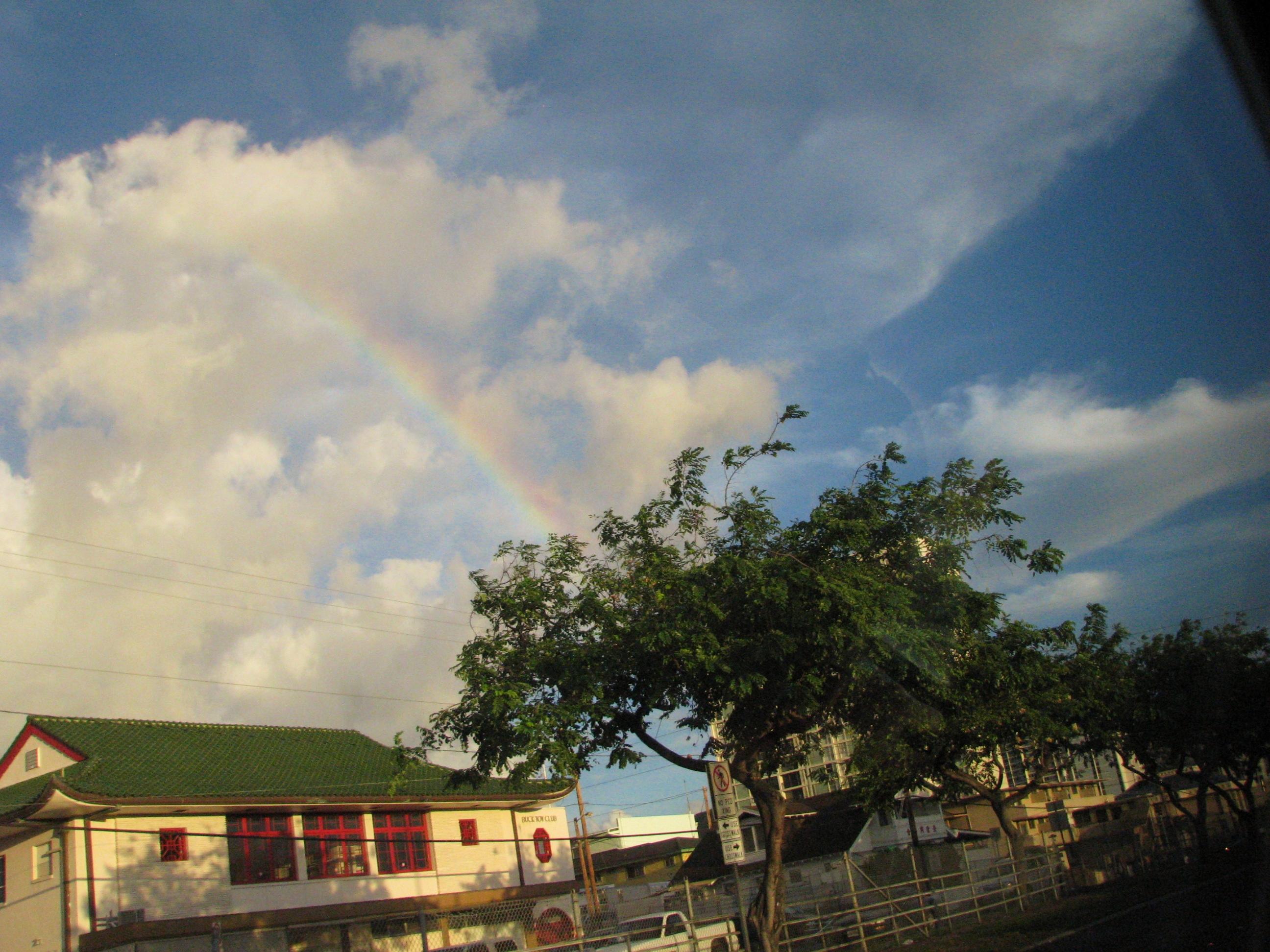 A Rainbow Nana S Backyard Thoughts