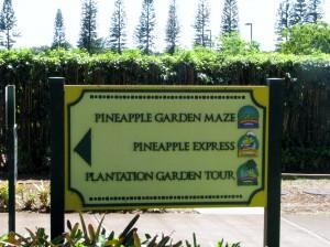 2013 10 29 Hawaii Dole Plantation SignsDirectional