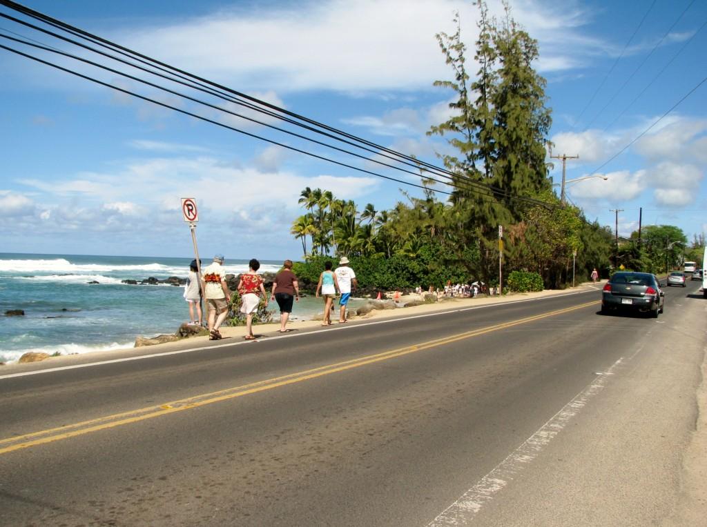 2013 10 29 Hawaii Honolulu Turtle Bay (7)