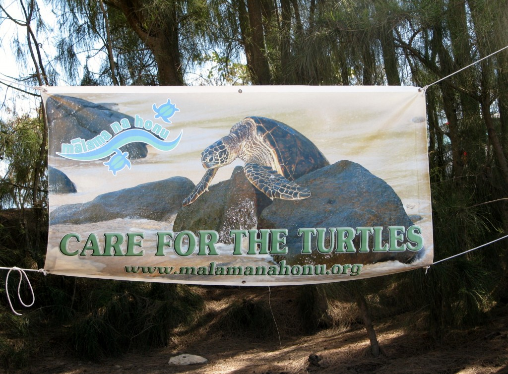 2013 10 29 Hawaii Honolulu Turtle Bay Care for the Turtle Sign