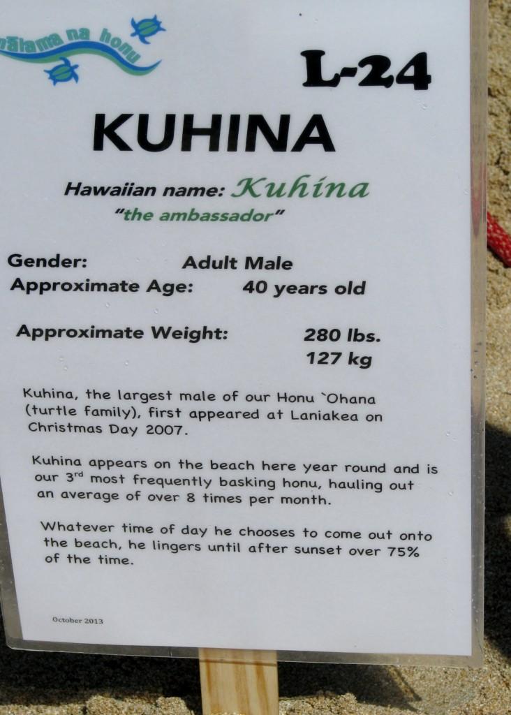 2013 10 29 Hawaii Honolulu Turtle Bay Turtle Kuhina Sign