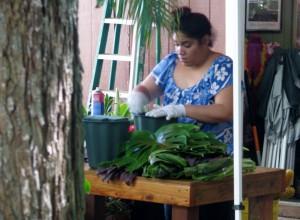 2013 10 29 Hawaii Tropical Farms Macadamia Nut Outlet (3)