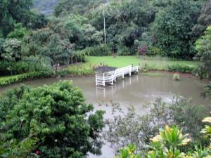 2013 11 01  Hawaii Kaneohe Haleiwa Joe's II Seafood Grill 10 Garden