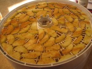 2014 08 23 Dehydrating Apples (4)