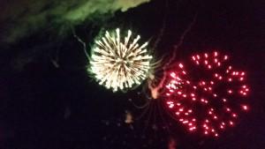 2015 07 03 4th of July Week End Lansing FireWorks (19)