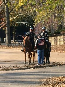 2015-11-25-new-york-mounted-police-central-park-mounted-police-2