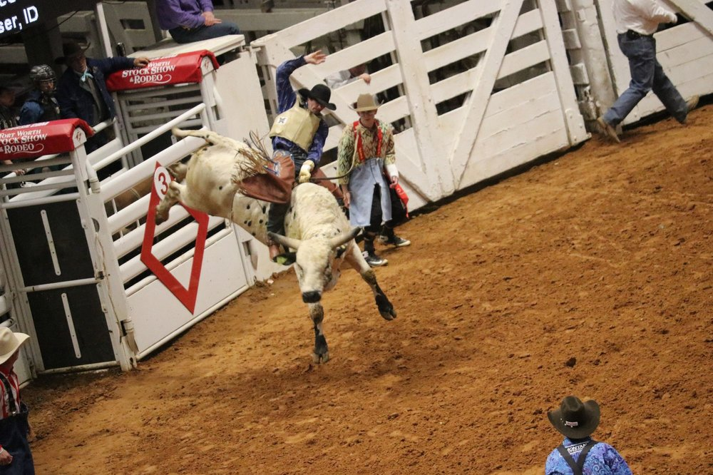 2019 02 05 Fort Worth Stock Show Amp Rodeo 11 Nana S