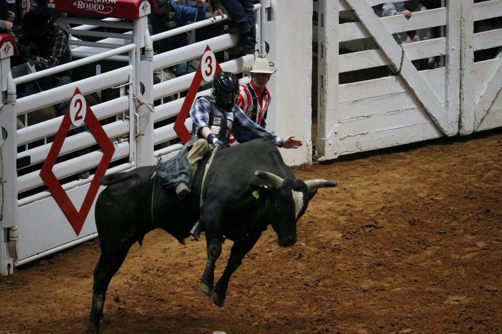 2019 02 05 Fort Worth Stock Show Amp Rodeo 8 Nana S